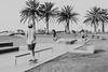 Port Macquarie - palm trees (burntfeather) Tags: portmacquarie port australia newsouthwales skatepark skateboarding skaters skating skatebowl bowl portmacquarieskatepark