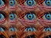 Watching You (Tobymeg) Tags: eye altered images mirrored tiled art close up multi dragan effect used panasonic dmcfz72