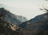 Mountain Hills (sotirisdimi) Tags: parnitha greece snow mountain deer mushroom
