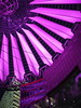 Pink Night (madbesl) Tags: berlin deutschland germany europa europe sonycenter potsdamerplatz nacht night architecture architektur modernearchitektur modernarchitecture futuristisch futuristic lichter lights beleuchtung olympus omd em10 m10 omdem10 lumix20mmf17