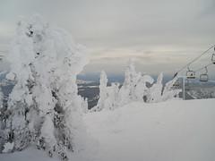 Skiing in Sunpeaks (Keith Levit) Tags: canada hasselbladx1d skiing kamloops britishcolumbia winter sunpeaks
