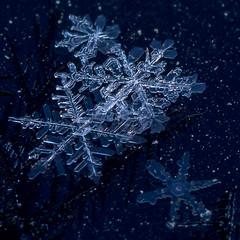 Diamond Dust (LadyBMerritt) Tags: diamonddust ice crystals icecrystals snowflakes frost frozen winter cold