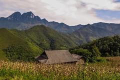 Horská krajina severního Vietnamu (zcesty) Tags: vietnam23 pole krajina hory dům vietnam dosvěta hàgiang vn