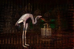 The keeper / Artist : Meilo Minotaur (Bamboo Barnes - Artist.Com) Tags: meilominotaur delicatessen bird crane birdcage night dark green red glod brown black grey white vivid surreal texture secondlife digitalart virtualart manipulation bamboobarnes tellmeastory