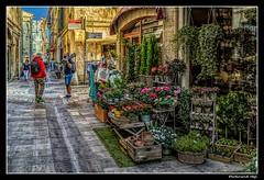 Arles_France (ferdahejl) Tags: arles france dslr canondslr canoneos800d