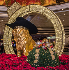 Leo the Lion Decorated for Christmas and for the National Finals Rodeo in the Lobby of the MGM Grand Resort (scattered1) Tags: 2017 christmas grand lasvegas leo leothelion mgm mgmgrand nfr nv nationalfinalsrodeo nevada xmas cowboy cowboyhat decoration finals hat holiday lion lobby national ornament pointsetta rodeo season mascot