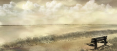 a single view (♥Adriënne - for a better and peaceful world -) Tags: texturebyskeletalmess bokeh ♥adrienne terneuzenatthehorizon westerschelde bench addyvanrooij