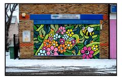 STREET ART by ARTISTA (StockCarPete) Tags: artista spring snow streetart londonstreetart graffiti urbanart shoreditchart london uk bees flowers shutterart brickwork eastlondon