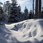 Harz-Oderbrueck_e-m10_1012074092 thumbnail