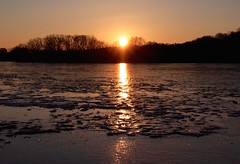 Golden sheen on ice at sunset (ole_G) Tags: arlington spypond ice frozen