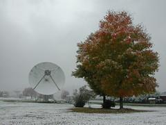 DSCN3412 (greenbankobservatory) Tags: 45ft winter fall