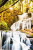 Karura Waterfalls (snkoigi) Tags: waterfall nature forest stream river tree tropicalrainforest freshness water leaf scenics beautyinnature outdoors thailand falling landscape rockobject flowingwater purity plant nx1 tembea kenya