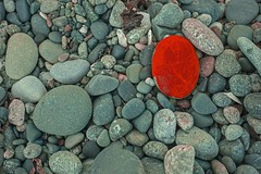 Blood from a stone (F0t0graphy) Tags: red rock shore beach dallasroad jamesbay victoria canada