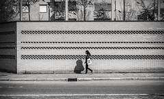 Zig-Zag (damar47) Tags: streetstyle streetphotography lines zigzag streetlife streetview street stranger walking fromdistance stripes wall biancoenero blackwhite shadows blackandwhite monochrome monochromatic citylife bologna italia italy urban pentax k30 pentaxart pedestrian