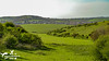 Countryside Fields to Brading (SLHPhotography1990) Tags: 2017 april sandown culver downs walk isleofwight isle wight area natural beauty outstanding country countryside rural landscape fields walks brading town distance native british flowers