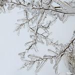 Icy Decorations - Décorations glacées thumbnail
