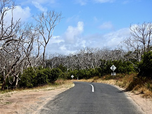 Road's End