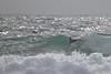 2018.01.28.08.50.58-Nick long ride-0001 (www.davidmolloyphotography.com) Tags: maroubra bodysurf bodysurfing bodysurfer