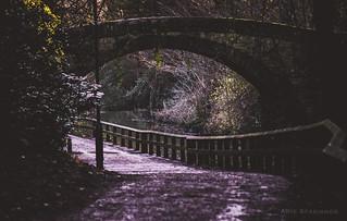 The Road Under the Bridge