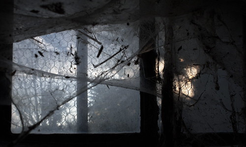 "soir c'est noir • <a style=""font-size:0.8em;"" href=""http://www.flickr.com/photos/88042144@N05/39256484285/"" target=""_blank"">View on Flickr</a>"