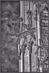 Gárgolas de la Catedral de Burgos. (Jose Roldan Garcia) Tags: burgos catedral perspectiva piedras gárgolas gótico arquitectura medieval esculturas fachadas
