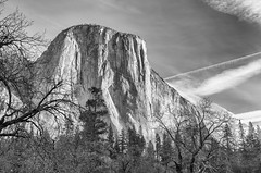 El Capitan - BW (rschnaible (Not posting but enjoying your posts)) Tags: yosemitenationalpark yosemiten 約塞米蒂國家公園(yosemite 约塞米蒂国家公园(yosemite sierranevada mountains rugged cliffs outdoor west western us usa california el capitan bw black white photography monotone landscape