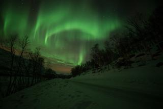 Aurora, Nakkevatnet, Troms, Norway