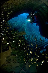 Abu Nuhas reef Kimon-M wreck