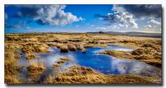 Wet Underfoot (jeremy willcocks) Tags: wetunderfoot dartmoor devon ukjeremywillcocksc2018fujixpro2xf1024mm moor moors water reflection clouds sun sunny landscape wwwsouthwestscenesmeuk people tor walkers