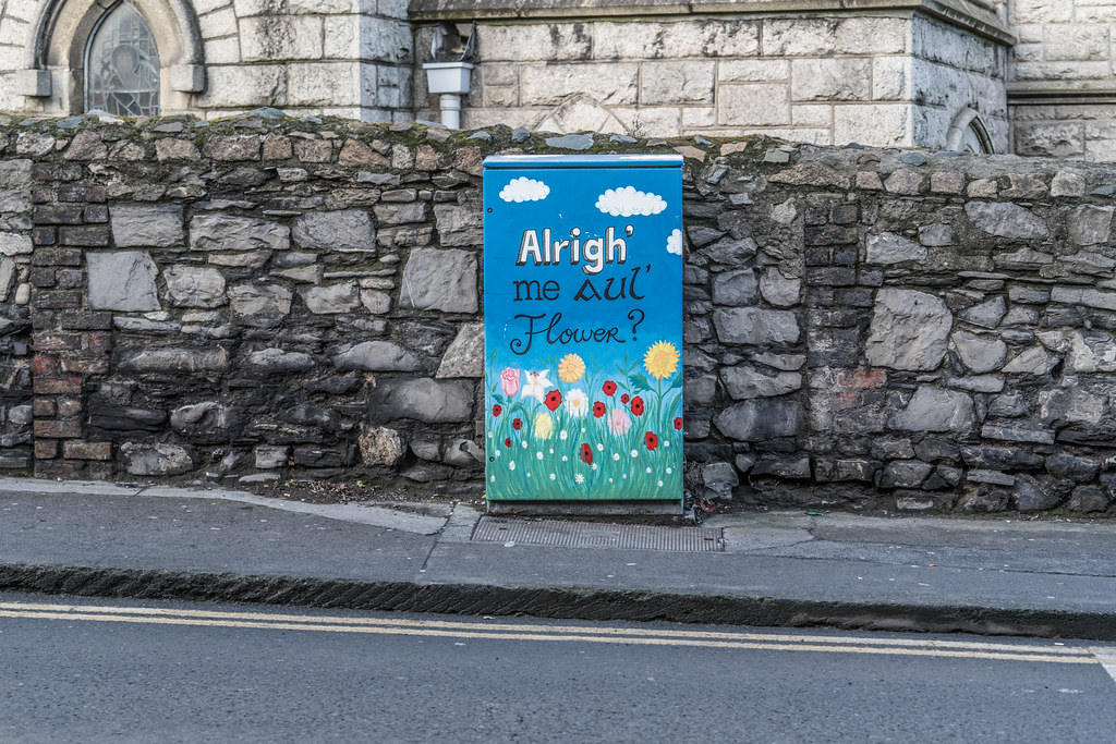 ALRIGHT ME AUL FLOWER BY ALISON O'GRADY [PAINT-A-BOX STREET ART AT RINGSEND BRIDGE IN DUBLIN]-135461