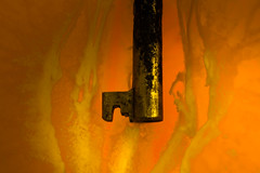 A Clockwork Orange - HMM! (Barrie T) Tags: macromondays myfavouritenovelfiction