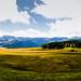 Idyllic Holiday on the Alpe Di Siusi