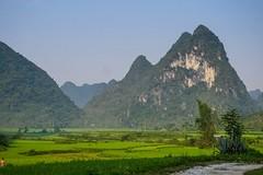 Krajina severovýchodního pohraničí (zcesty) Tags: vietnam20 skála pole krajina hory vietnam dosvěta caobằng vn