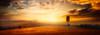Tuscany at Dusk (Juan Figueirido) Tags: tuscany toscana tuscanlandscape tuscan tuscanyhills tree sunset warm glow dusk solpor puestadesol travel italy italia field golden summer verano