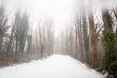 Snow Today!!!