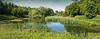 Grand étang du Rouge-Cloître, Auderghem, Bruxelles, Belgium (claude lina) Tags: claudelina belgium belgique belgïe bruxelles brussel auderghem jardin jardinbotaniqueexpérimentaljeanmassart garden jeanmassart étang roseaux