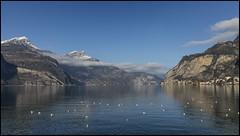_SG_2018_01_0024_IMG_4616 (_SG_) Tags: lake see vierwaldstädtersee flueelen suisse schweiz switzerland alps alpen winter winterwonderland schwyz innerschweiz morschach canton skiing alpine landscape lucerne four central