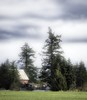 Whispy Cloudy Day (robinlamb1) Tags: landscape outdoor barn tree trees evergreen evergreens sky cloud whispycloud bluesky grass field