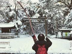 Tokyo Snow (kirainet) Tags: meijijingu tokyosnow