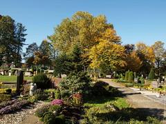 Paderborn/Elsen: Friedhof PB-Elsen - 2017 PA151708-50%G1 (jean.paul_martin) Tags: paderborn elsen pbelsen friedhof friedhofpbelsen cimetiere