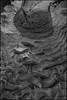 _dsc4646jpg_16638687985_o (idreamedof) Tags: 23 3570135mdi adonal agfa agfavistaplus200 aviemore bwfilm cairngormsnationalpark highlandsofscotland mf minolta rodinal rokkor scotland scottishhighlands spey strathspey uk xe5 abstract analogue atmosphere developer film ice landscape lens negative pattern pool ripple river vertical water weather zoom