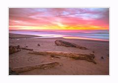 Day without end (Krasne oci) Tags: landscape seascape beach beautiful sunset sky romantic colorful driftwood sand oregon northwest pacificcoast evabartos artphotography longexposure