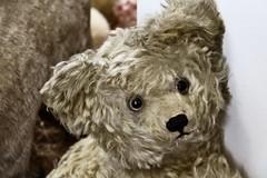 Bär (just.Luc) Tags: bär beer ourse bear toy jouet spielzeug speelgoed pluche münchen munich bavaria bavière beieren bayern museum museo musée allemagne deutschland duitsland germany