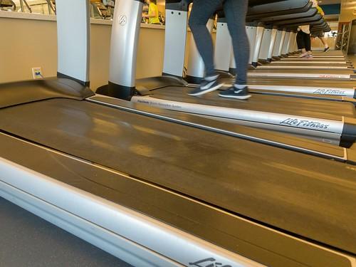 dogwoodweek6 dogwood52 dogwood2018 treadmill