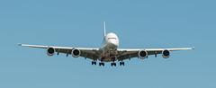 20180216_3845_7D2-200 Emirate A380 A6-EUG in cross wind (johnstewartnz) Tags: canon canonapsc apsc eos 100canon 7d2 7dmarkii 7d canon7dmarkii canoneos7dmkii canoneos7dmarkii 70200mm 70200 70200f28 christchurch christchurchinternationalairport emirates airbus a380 airbusa380 a6eug realmadrid ek412