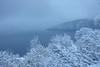 Winterschlaf (martinus.structor) Tags: obere nase vierwaldstättersee schweiz switzerland