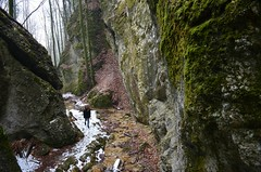 Steinwandklamm (anuwintschalek) Tags: nikond7000 d7k 18140vr austria niederösterreich steinwandklamm talv winter february 2018 lumi schnee snow ice jää eis sula tauwetter oja bach vesi wasser water lapsed wanda