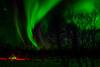 Northern Lights (nickymstevenson) Tags: northern lights aurora stars arctic sky tipi