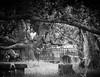 Cemetery (Mariasme) Tags: monochrome blackandwhite stpeters cemetery matchpointwinner mpt614