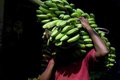 Bananas! Ernakulum market, India (ambfotos1) Tags: obscurity shadows carryingbananaa workers markets kochi kerala ernakulum india bananas